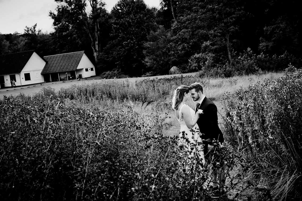 Må vi lægge vore bryllupsbilleder ud på nettet?